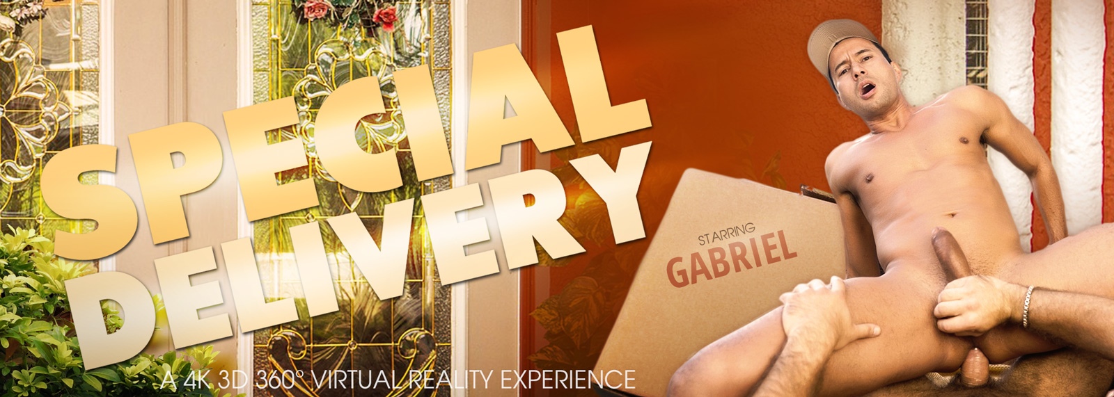Special Delivery - VR Porn Video, Starring Gabriel D'Allessandro