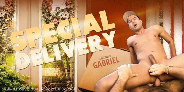 Special Delivery VR Porn Video